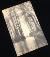 27   Saint-Pierre-du-Vauvray Pendant Les Inondations, Février 1910, Route De Portejoie - Frankreich