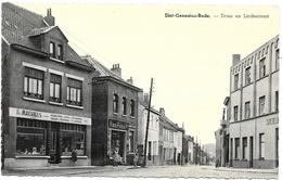 Sint-Genesius-Rode NA6: Dries En Lindestraat - Rhode-St-Genèse - St-Genesius-Rode