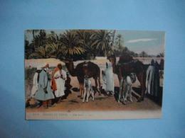 Scènes Et Types  -  ALGERIE - TUNISIE - MAROC -  Une Halte - Cartes Postales