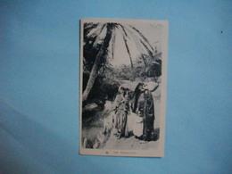 Scènes Et Types  -  ALGERIE - TUNISIE - MAROC -  Porteuse D'Eau - Cartes Postales