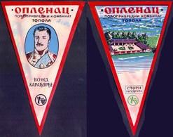 SERBIA - SRBIJA - OPLENAC - TOPOLA - STARI PODRUM - ВОЖД КАРАЂОРЂЕ - FLAG - Cc 1970 - Hotel Labels