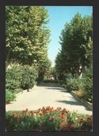 Pertuis - Région De Apt - Carte Postale Vaucluse Lubéron - Pertuis