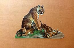 CHROMO DECOUPI TIGRE AVEC SES PETITS    7.5 / 11 Cm - Animals