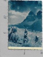 CARTOLINA VG ITALIA - Contadini Al Lavoro - Carnia - Alpi - 10 X 15 - ANN. 1951 AVIANO (UD) - Udine