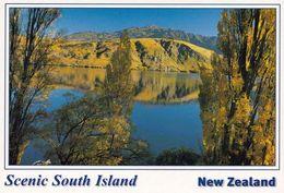 1 AK New Zealand * Landschaft Auf Der Südinsel * - Neuseeland