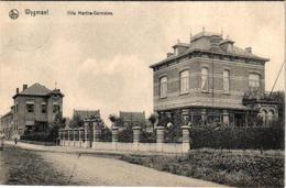 2 Oude Postkaarten   Wijgmaal  Wijgmael   Villa Kestens Edit. Berckmans   Villa Marthe-Germaine 1908 - Belgique
