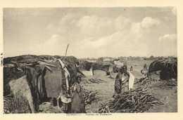 DJIBOUTI Huttes De Nomades    RV - Djibouti