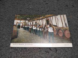 ANTIQUE POSTCARD PORTUGAL MADEIRA ISLAND - COSTUMES  - BORRACHEIROS UNUSED - Madeira