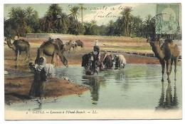 TUNISIE - GAFSA - Laveuses à L'Oued-bayech - Tunisie