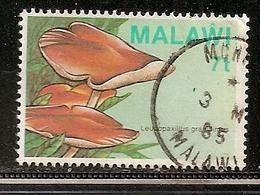 MALAWI OBLITERE - Malawi (1964-...)