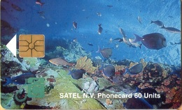 Antilles (Neth) - Saba, Satel, Marine Life, Fishes, 17 NAƒ, 2.000ex, 10/96, Used - Antilles (Netherlands)