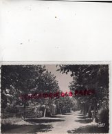 33 - CASSY LES BAINS- AVENUE DU PORT ET DE LA PLAGE - 1953 -GIRONDE - France