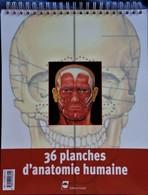 36 Planches D' ANATOMIE - ( Format : 28 X 35 ) - Éditions Pradel - ( 2003 ) . - Wissenschaft