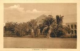 Pays Div : Ref M232- Afrique -  Djibouti - La Poste - Carte Bon Etat - - Djibouti