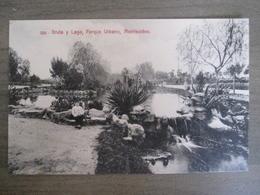 Tarjeta Postal - Uruguay Uruguaya Montevideo - Gruta Y Lago Parque Urbano - 310 Editor A. Carluccio Montevideo - Uruguay