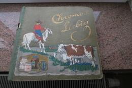 Album Liebig 1931  Avec 50 Pages Remplies D'images LIEBIG De Belle Qualité - Liebig