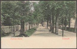 Arwenack Avenue, Falmouth, Cornwall, C.1900-05 - Stengel U/B Postcard - Falmouth