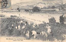 06-GRASSE- LA CEUILLETTE DU JASMIN - Grasse