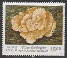 India 2001 Corals 15.00 R Multicoloured SW 1847 O Used - India