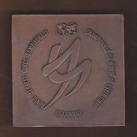 AC - WORLD FREESTYLE WRESTLING CHAMPIONSHIP CHAMPIONNAT DU MONDE DE LUTTE LIBRE 1974 ISTANBUL, TURKEY MEDAL - PLAQUETTE - Habillement, Souvenirs & Autres