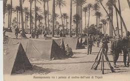 441-Tripoli-Libia-Africa-ex Colonie Italiane-Militaria-Guerra Italo-Turca-Accampamento Tra I Palmizi - Libya