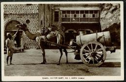 RB 1217 -  Early Real Photo Postcard - Camel Water Cart No. 1 - Aden Yemen Middle East - Yemen