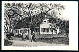 B5566 - Gruss Vom Forsthaus Glaubzahl Bei Nidda - Wetterau - Kreis