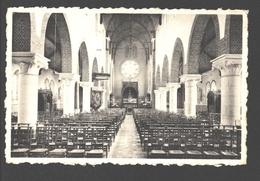 Baal - Binnenzicht Van De Kerk - 1961 - Tremelo