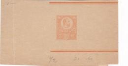 ENTIERS ENTERO FAJA UNCIRCULATED CIRCA 1900's-BLEUP - Postal Stationery