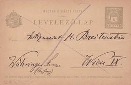 ENTIER ENTERO LEVELEZO LAP VOYAGE. HONGRIE CIRCA 1900's-BLEUP - Postal Stationery
