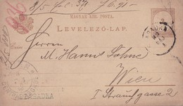 ENTIER ENTERO MAGYAR KIRALYI LEVELEZO LAP CIRCULEE TO WIEN. HONGRIE CIRCA 1889's-BLEUP - Postal Stationery