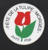FETE DE LA TULIPE MORGES - AUTOCOLLANT REF: 1026 - Autocollants