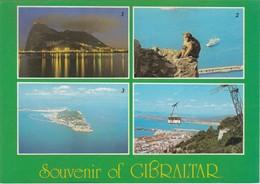 POSTCARD GIBRALTAR - MULTIVIEWS - Gibraltar