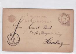 ENTIER ENTERO MAGYAR KIR CIRCULEE TO HAMBURG. HONGRIE CIRCA 1887-BLEUP - Postal Stationery
