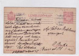 ENTIER ENTERO MAGYAR KIR CIRCULEE BUDAPEST. HONGRIE CIRCA 1919-BLEUP - Postal Stationery