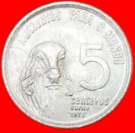 # FAO (1975-1978): BRAZIL ★ 5 CENTAVOS 1975 ZEBU UNC MINT LUSTER! LOW START ★ NO RESERVE! - Brasilien