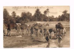 Scènes Algériennes.La Traversée D'un Oued.Expédié D'Alger à Tilff (Belgique) - Algeria