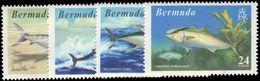 Bermuda 1972 World Fishing Records Unmounted Mint. - Bermuda