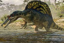 [T48-096]  Prehistorics Dinosaur , Pre-stamped Card Postal Stationery - Stamps