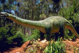 [T48-115]  Prehistorics Dinosaur , Pre-stamped Card Postal Stationery - Stamps