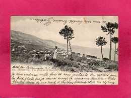 06 Alpes Maritimes, Menton, Vue Prise De La Madone, Animée, 1902, () - Menton