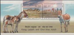 INDIA-2013   MINIATURE SHEET  / THE WILD ASS / KIANG-LADAKH /GHOR KHAR-KUTCH - Unused Stamps