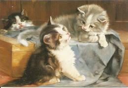 CHAT CAT KATZE ILLUSTRATEUR JULIUS ADAM NAIF 2000  CP DOUBLE  CHATON - Cats
