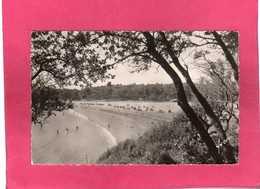 17 Charente Maritime, Vaux-Nauzan, La Plage Près De St-Palais, Animée, Cabines, 1956, (Yvon) - Vaux-sur-Mer