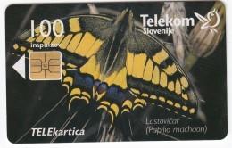 SLOVENIJA SLOVENIA PHONECARD 1998 LASTOVIČAR PAPILIO MACHAON TEL.PREDAL ŽELJA  BUTTERFLIES TELEKOM 095 - Slovenia