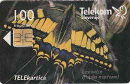 SLOVENIA SLOVENIJA PHONECARD 1998 LASTOVICAR PAPILIO MACHAON  TEL.PREDAL ZELJA  BUTTERFLIES  CAT.NO. 095    TELEKOM - Slovenia