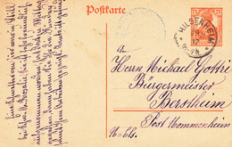 EP Michel P 110 Obl HILSENHEIM Du 28.11.17 Adressé à Berstheim - Marcofilie (Brieven)