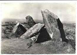 SAINT-GOAZEC - Le Castel-Ruffel Allée Couverte Mégalithique - Près De ROUDOUALLEC - Jos Le Doaré éditeur N°769 - France
