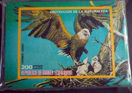 Equatorial Guinea 1976 100 X  Birds In North America Imperf. Sheet Mi.B251 MNH LOT.006 - Equatorial Guinea
