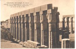 POSTAL     LUXOR  -EGIPTO  - COLONNATO DEL TEMPLO DE LUXOR - Luxor